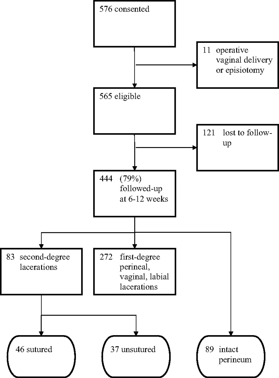 Do Unsutured Second-Degree Perineal Lacerations Affect Postpartum