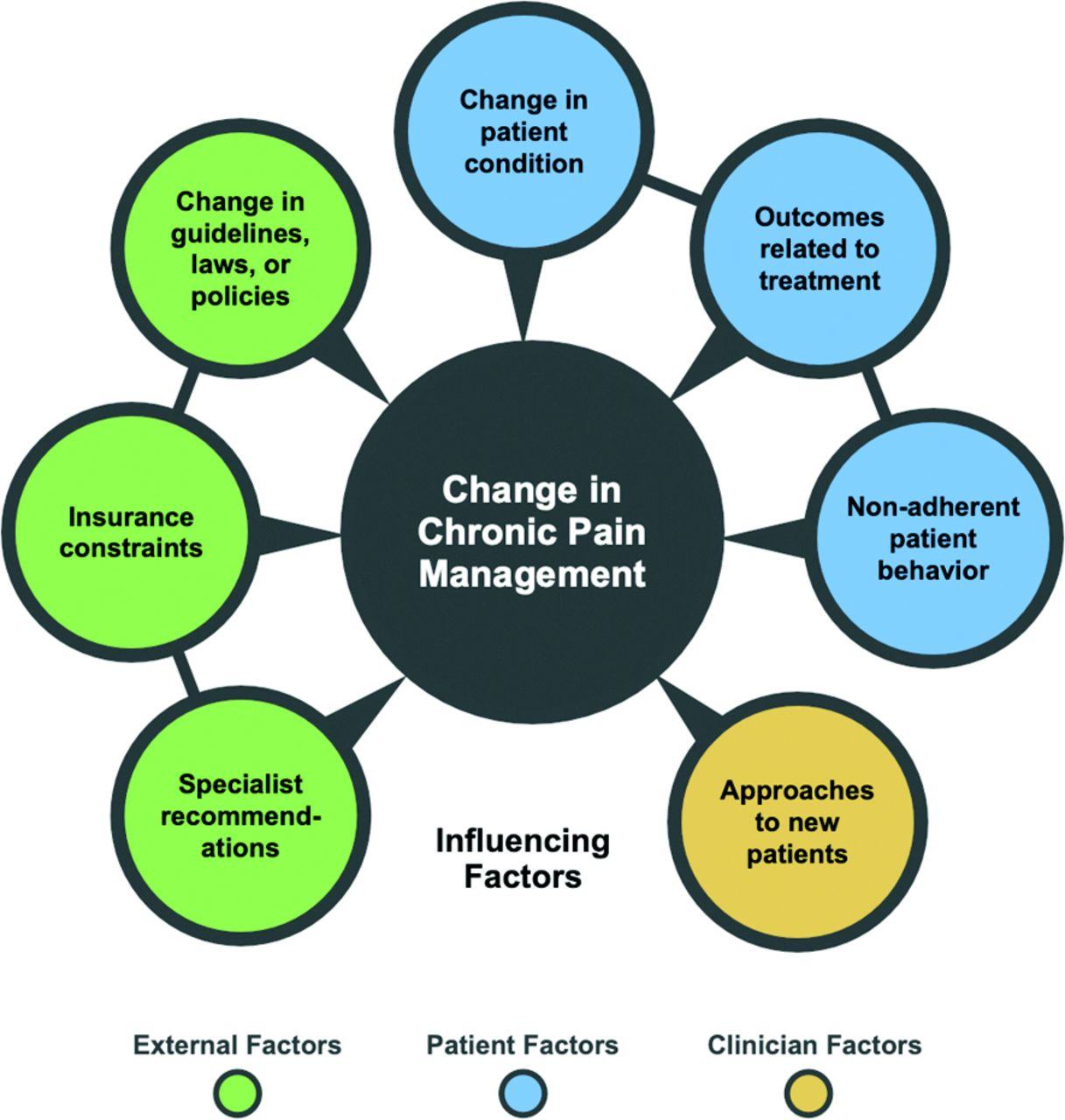 Factors That Influence Changes to Existing Chronic Pain Management Plans American Board of Family Medicine
