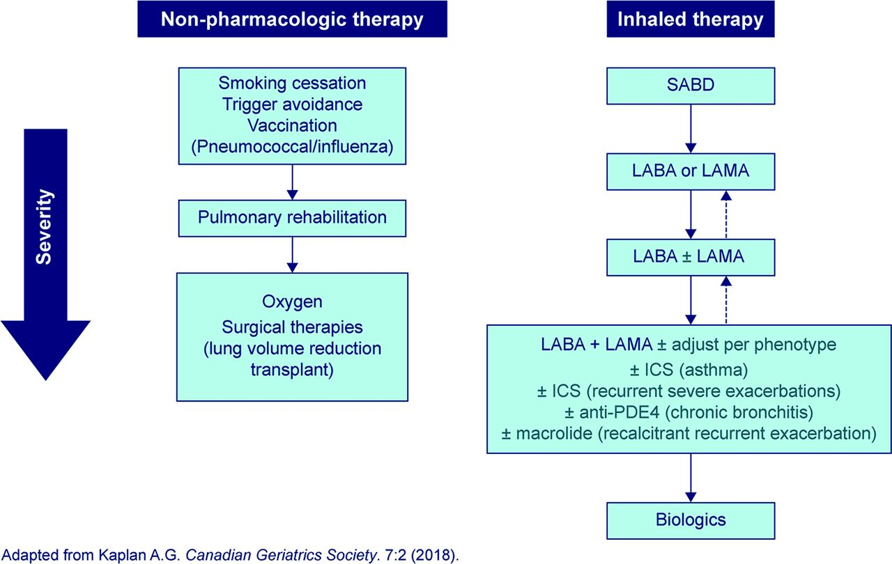 Steroid treatment for copd exacerbation steroid powder online